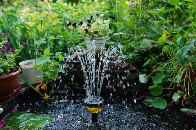 물 분수 녹색 잔디 잔디 포장 재료 벽돌 경로 나무와 관목 조경과 집의 앞뜰 정원