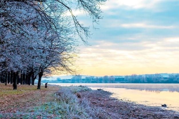 日の出の間に絵のように美しい空と海岸の川の霜に覆われた木