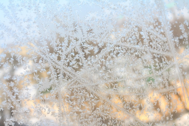 The frost on the window