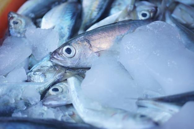 凍った魚のクローズアップ