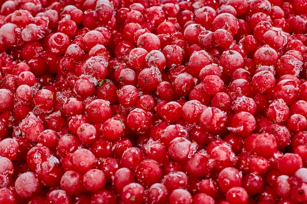 Frozen food, chilled to low temperature currant red