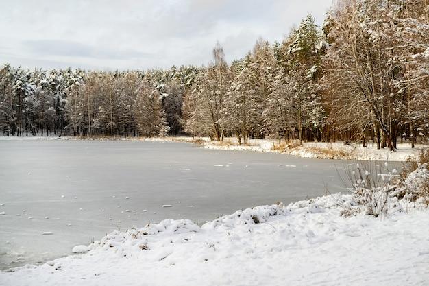 눈으로 덮여 나뭇 가지와 은행을 따라 얼어 붙은 숲의 호수와 소나무. 겨울 분위기,