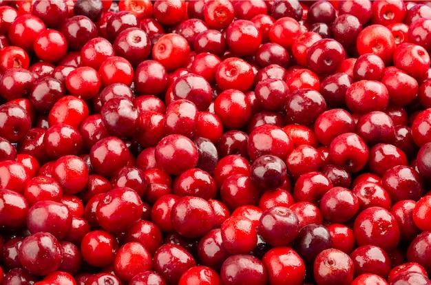 Frozen fresh sour cherries