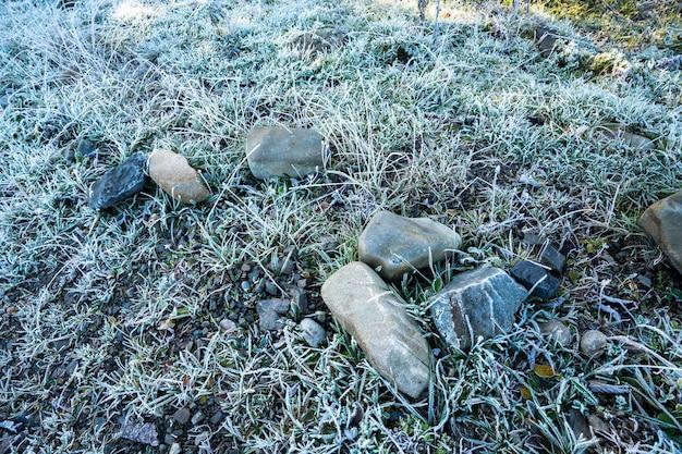 가로 보기에서 얼어붙은 잔디 배경 및 질감
