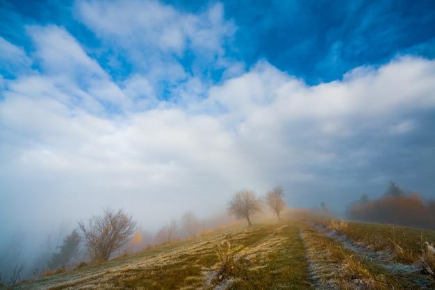아름다운 푸른 하늘과 푹신한 흰 안개에 흰 서리로 덮여 얼어 붙은 잔디