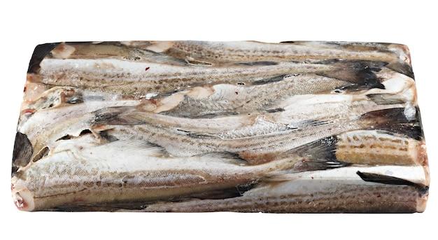 Замороженная в блоке ледяная рыба, минтай. изолированные