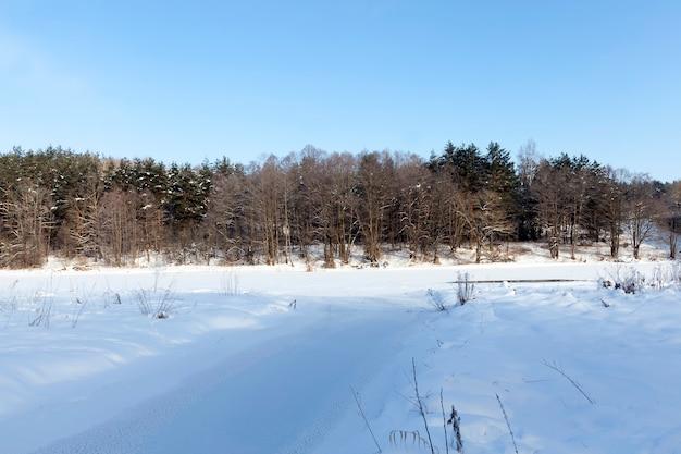 Замерзшая зимой река, поверхность реки и деревья засыпаны снегом.