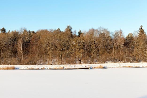 겨울철에 얼어 붙은 호수와 숲, 눈은 눈이 내리고 해안 근처에 작은 부두가 있습니다.