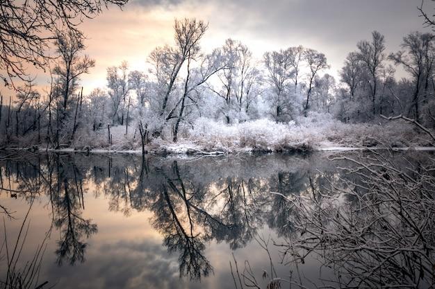 눈 덮힌 나무와 겨울에 얼어 붙은 호수