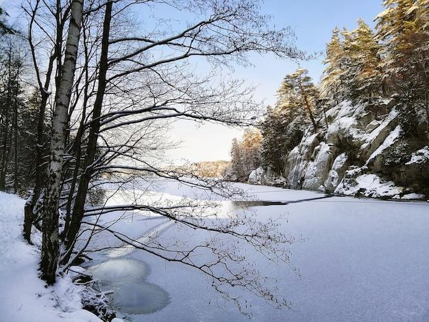 Lago ghiacciato circondato da rocce e alberi coperti di neve sotto la luce del sole a larvik in norvegia
