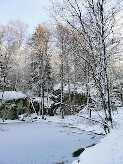 ノルウェーのラルヴィークで日光の下で雪に覆われた木々に囲まれた凍った湖