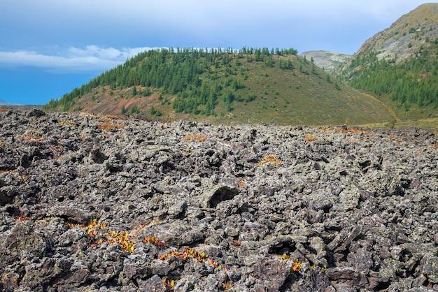 배경에 오래된 벌칸이 있는 화산 계곡의 얼어붙은 용암 밭