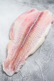 冷凍パンガシウスの魚の切り身。