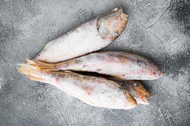 灰色の石のテーブルの背景に、冷凍ウミヒゴイまたはbarabulka生魚セット、上面図フラットレイ