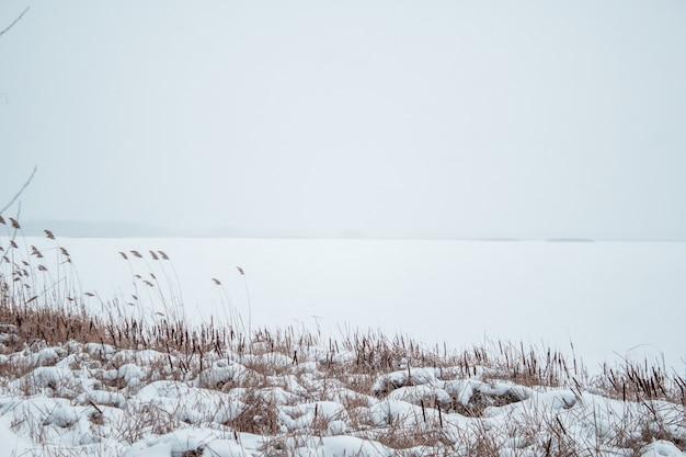 갈 대에서 해안을 볼 수있는 눈 속에서 얼어 붙은 강