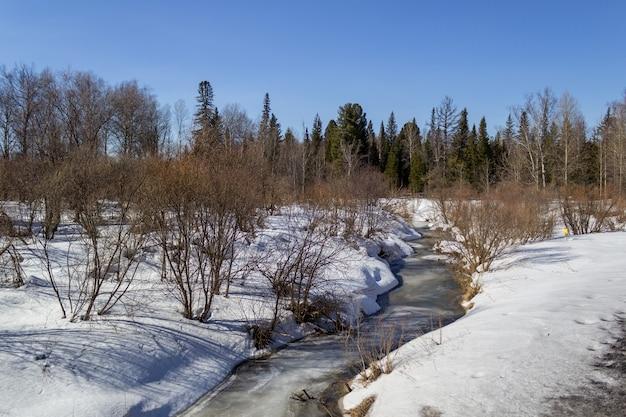 Замерзшая река зимой в лесу. солнечный день. красивый зимний пейзаж.