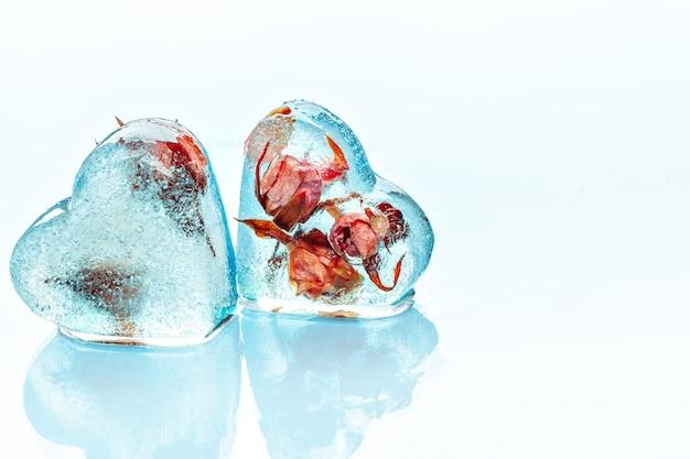 Frozen rose in ice cube