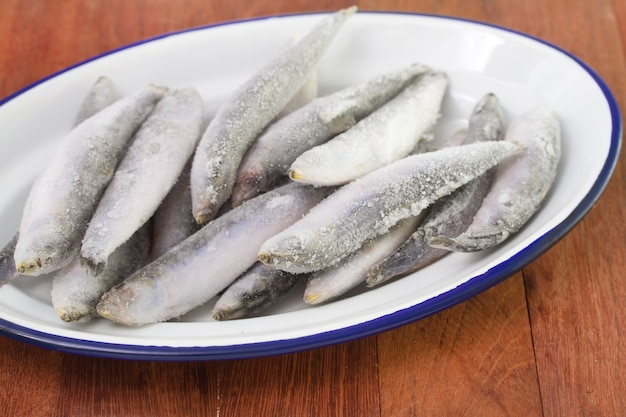 Frozen sardines on white dish