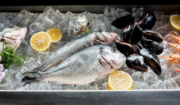 얼어 붙은 음식을 얼음 위에서 본다. 새우, 생선, 조개. 라임과 금속 배경 위에 얼음