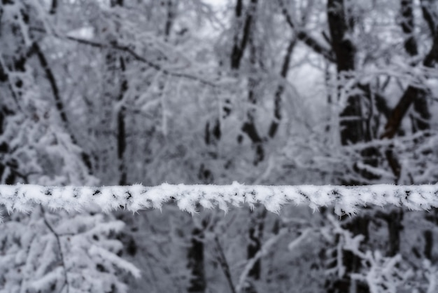 Frozen snow on an electrical wire