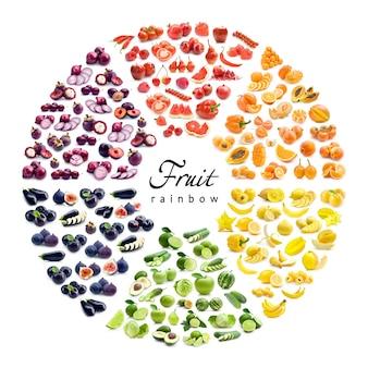 果物と野菜のカラーホイール(6色)