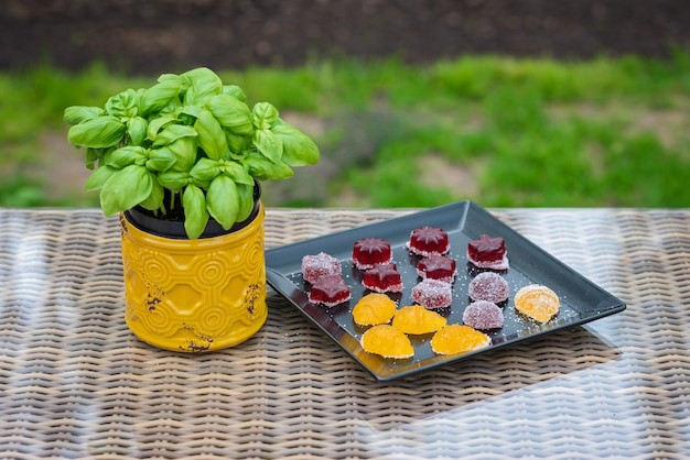 Fruit and berry marmalade sweets, jelly sweets on a black plate with a basil in a pot.