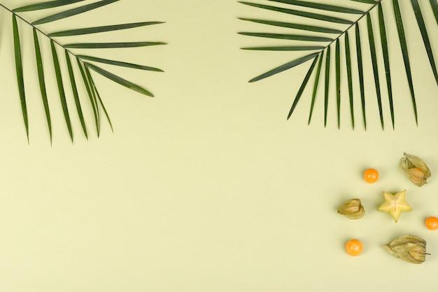 과일 carambol, 해변 액세서리 및 색종이에 열대 식물의 단풍. 불가사리와 과일 여름 배경