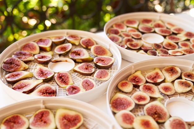 Процесс сушки фруктов на пластинах дегидратора
