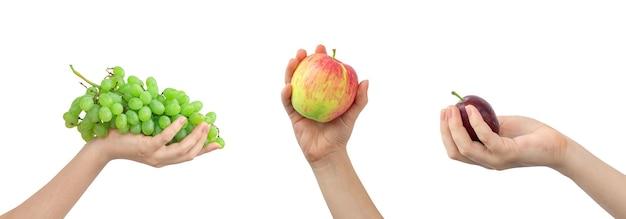 과일 믹스 흰색 배경에 고립입니다. 손에 녹색 포도, 사과, 보라색 매화를 들고 있는 손, 배너 사진