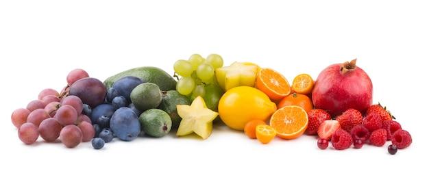 과일 무지개