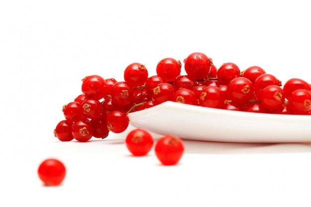 Fruit: red currant isolated on white
