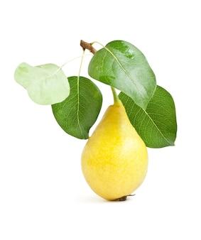フルーツ。白い表面に隔離された緑の葉を持つ黄色い梨