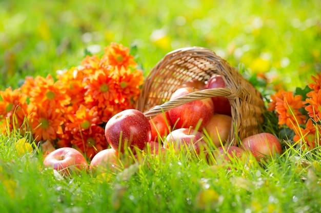 가을 야외에서 과일과 꽃. 추수 감사절 휴일 개념