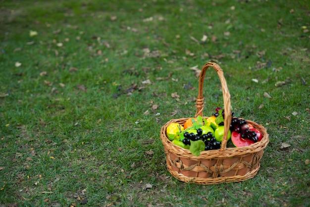 庭のバスケットの果物
