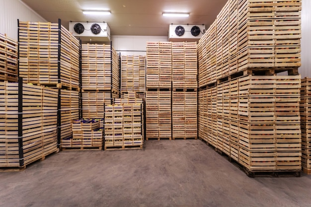 出荷の準備ができている木枠の果物。冷蔵インテリア。