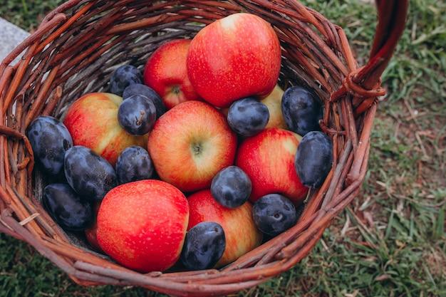 果物。赤いリンゴとプラムの籐のバスケットに入れられたさまざまな新鮮な熟した果物。