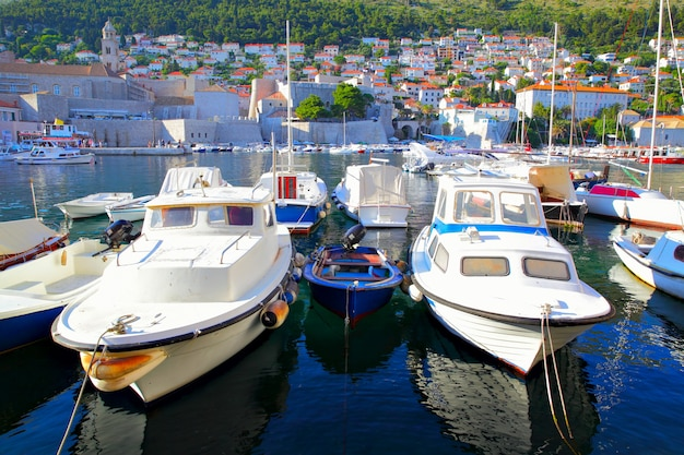 クロアチア、ドゥブロヴニクの旧港にあるfshingボート