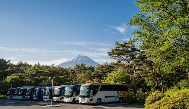 Fuji in the early morning with bus parking foreground in green season