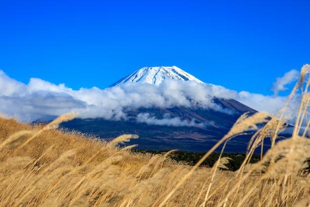 Гора фудзи и голубое небо с передним планом травяных полей в японии