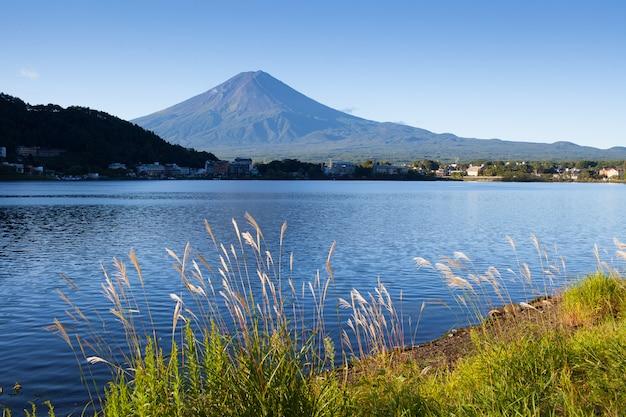 夏の日本の富士山