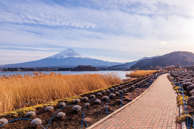 Fuji mountain at kawaguchiko lake,japan