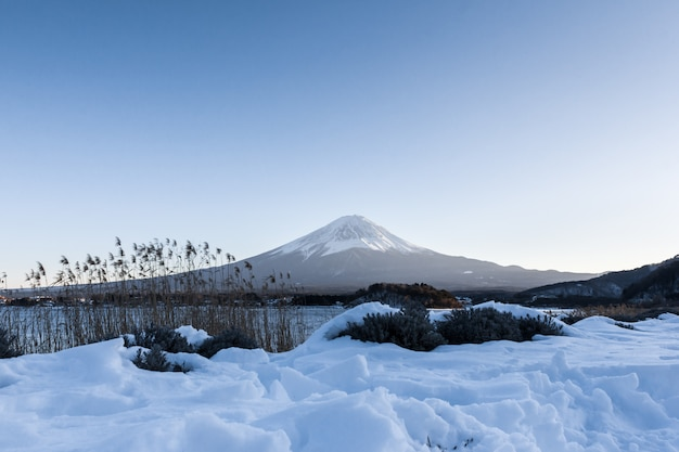 Fuji mountain at kawaguchiko lake in winter