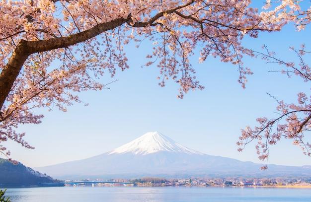 富士山の風景。休日の日本旅行と観光。春夏の桜の花。