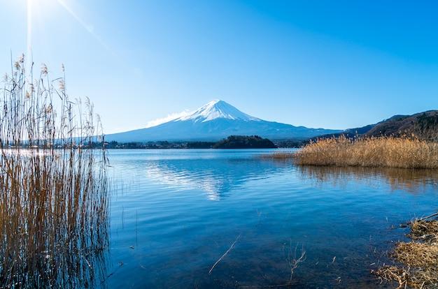 河口湖と青空の富士山