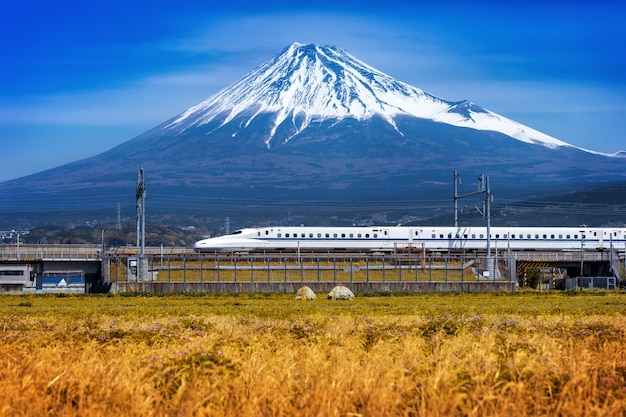 Fuji mountains and train in shizuoka, japan.
