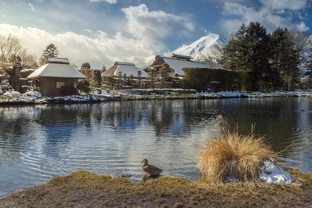 Fuji and oshino hakkai