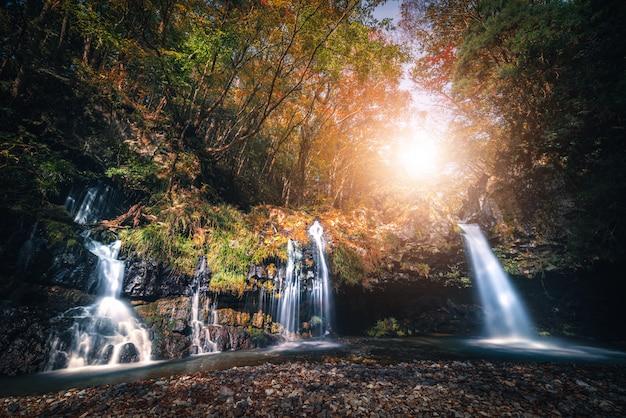 Водопад с листвой осени в fujinomiya, японии.