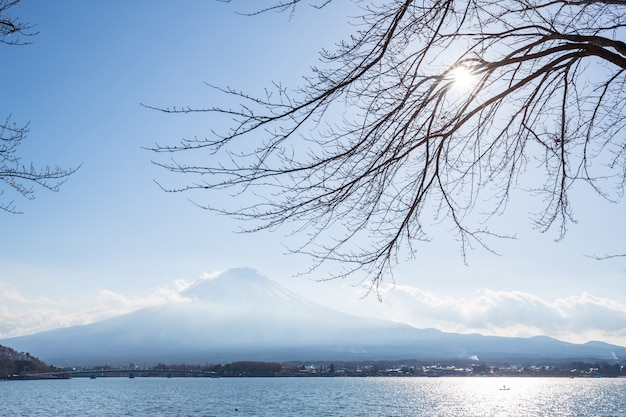 Fujisan from kawaguchigo lake