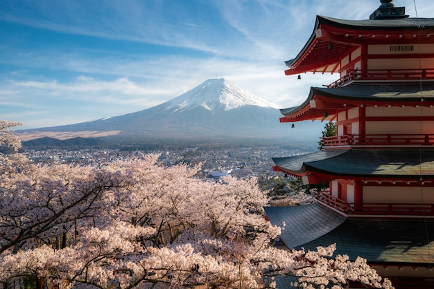Fujiyoshida, japan at chureito pagoda and mt. fuji in the spring with cherry blossoms full bloom during sunrise. japan