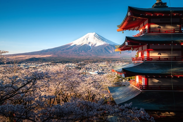 Fujiyoshida, japan at chureito pagoda and mt. fuji in the spring with cherry blossoms full bloom during sunrise. travel and vacation concept.